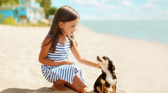 Girl and dog on the beach in summer day